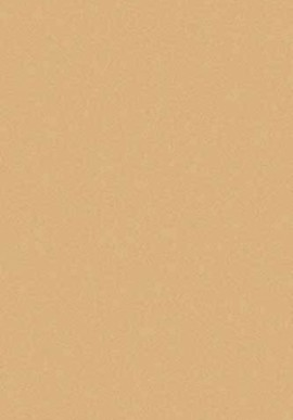 Ковер Шагги Комфорт S600 беж+темно-беж