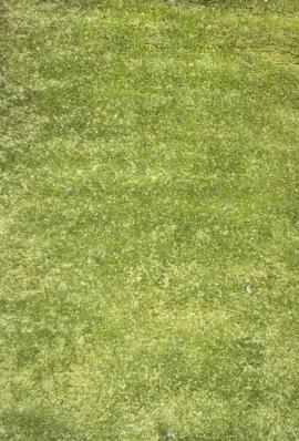 Ковролин Шагги 06 зеленый