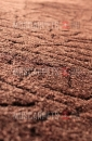 Ковролин Граб 77 коричневый