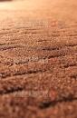 Ковролин Березка 076 бежево-коричневый